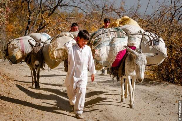 Афганистан – вперед в прошлое азия, афганистан