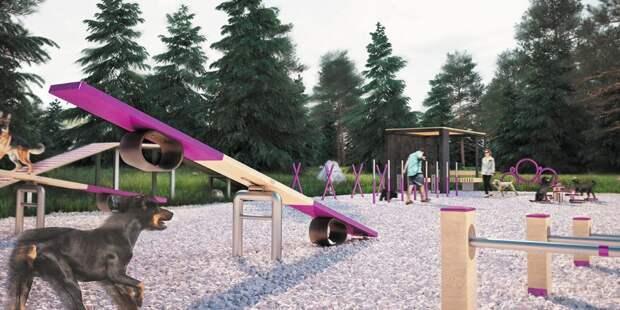 В Лосинке появится современная площадка для выгула собак
