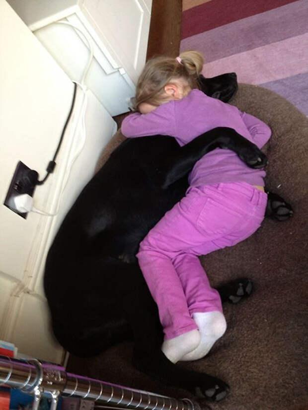 Когда она возвращается домой после долгого дня в школе, у неё был плохой день... Она просто обнимает своего лучшего друга.