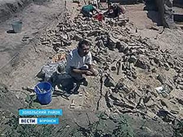 Дом, который построил из костей древний человек, раскопали в Костенках