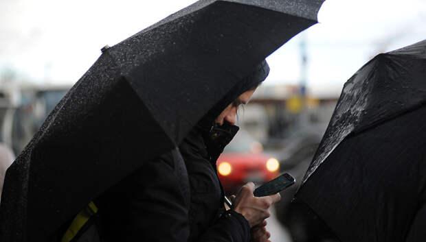 Тепло вернется в Московский регион в последний день текущей недели