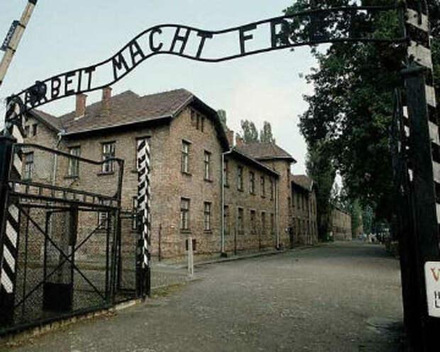 Рапорт акушерки из Освенцима: все дети рождались живыми! Стихи о девушках ВО войны.