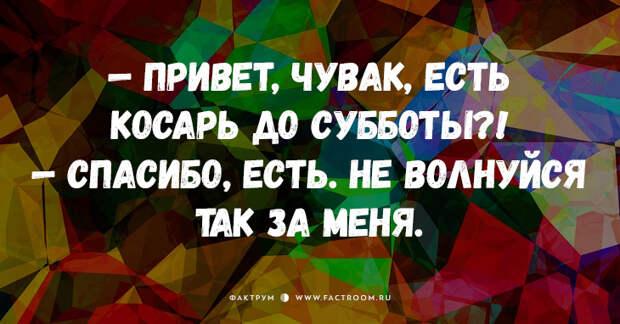 Свежие анекдоты от Михалыча, от которых заплачете от смеха!