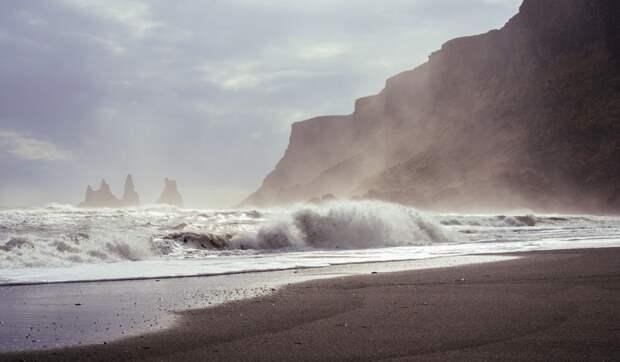 На берегу британского Уэльса нашли огромную тушу загадочного существа