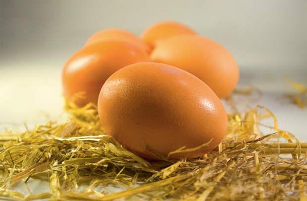 Потрясающие способы закоптить яйца