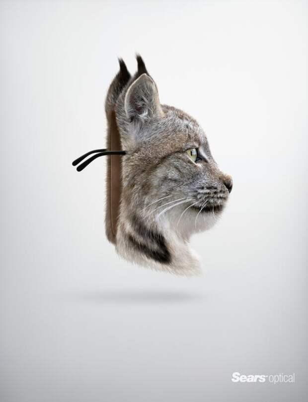 Lynx, Sears, Lg2, Quebec , Sears Holdings Corporation, Печатная реклама