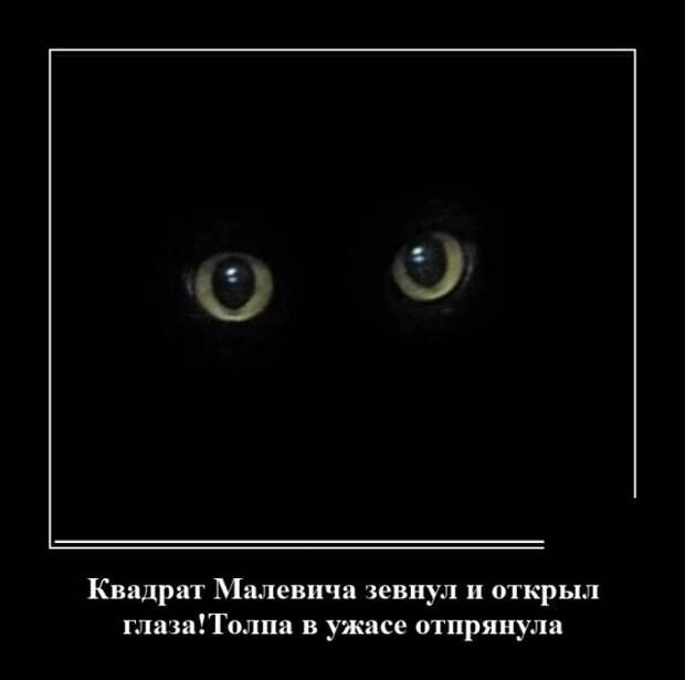 Демотиватор про кота в темноте