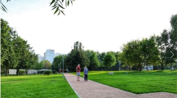 В двух скверах в Строгине появятся зоны для настольного тенниса и панна-футбола