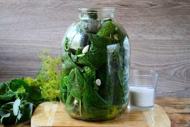 Рецепт хрустящих огурцов в холодной воде - без уксуса или лимонной кислоты