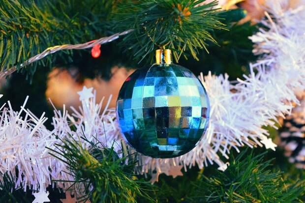 Рождество, Брэд, Искусственные Елки