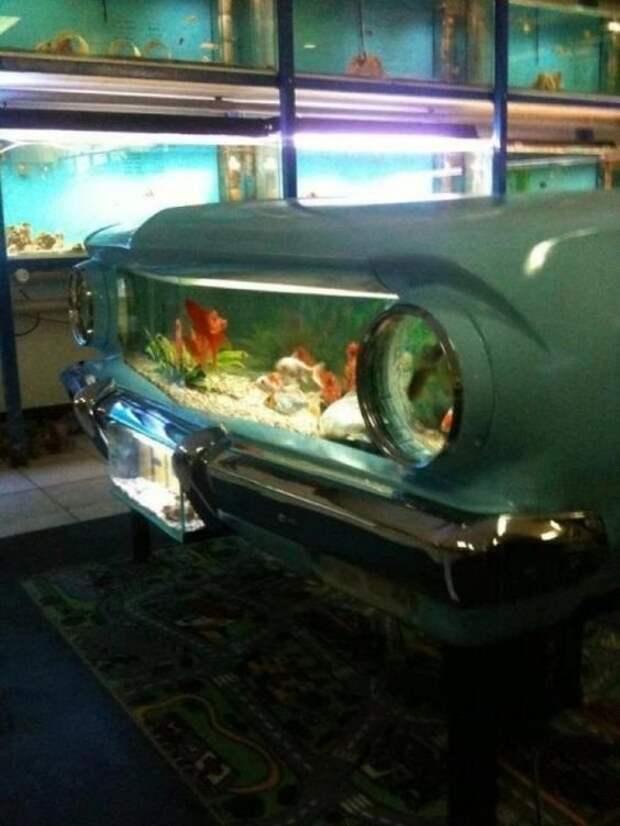 Можно даже аквариум сотворить Стиль, Фабрика идей, дизайн, интересное, машины, фантазия, что сделать