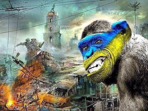 Украина майданулась