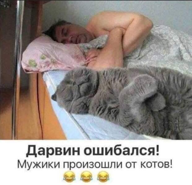 Если рядом с вами кто-то противно храпит, аккуратно поверните его голову до щелчка и спите спокойно