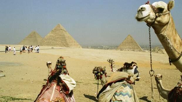 В АТОР спрогнозировали возможную стоимость пакетного тура в Египет