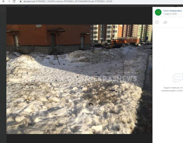«Крик души» у жителя Некрасовки вызвали загаженные собаками дворы