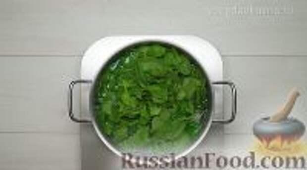 Фото приготовления рецепта: Ботвинья - шаг №5