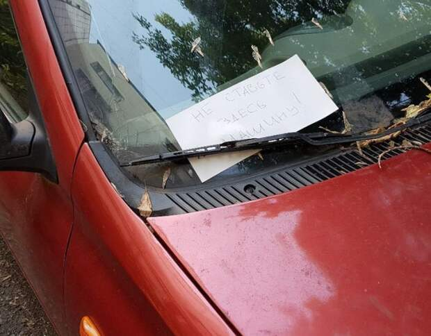 Карма настигла автоледи (2 фото)