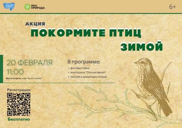 Экологическая акция «Покормите птиц зимой» пройдет в парке «Северное Тушино»