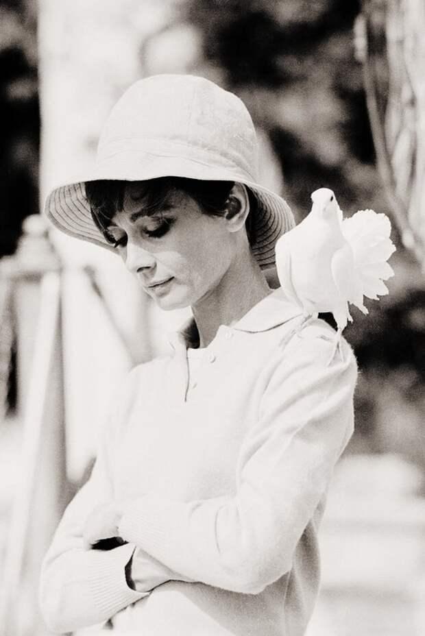 "Одри Хепберн во время съёмок ""Двое на дороге"" в Сен-Тропе, Франция, август 1966 года."