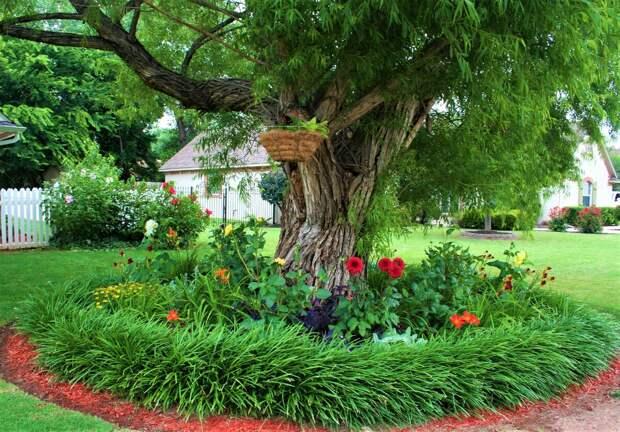 Добавьте ярких красок в тени деревьев