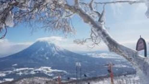 Горнолыжников в Японии привлекает особый, «пудровый» снег Хоккайдо