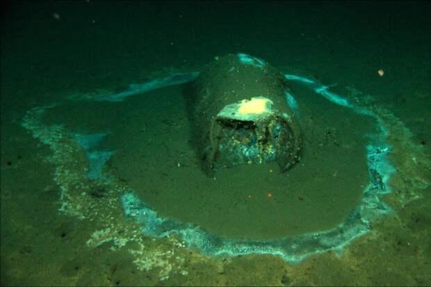 На дне моря в Калифорнии обнаружили 27 тысяч бочек. Скорее всего, в них ДДТ