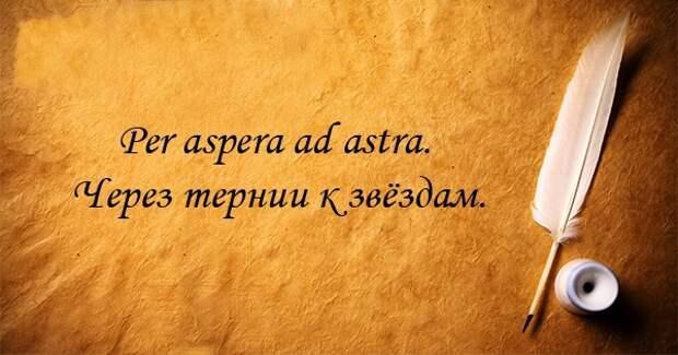 14 крылатых афоризмов на латыни афоризм, латынь