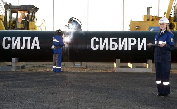 Немцы о «Силе Сибири»: «Северный поток-2» был для РФ лишь своеобразным экспериментом