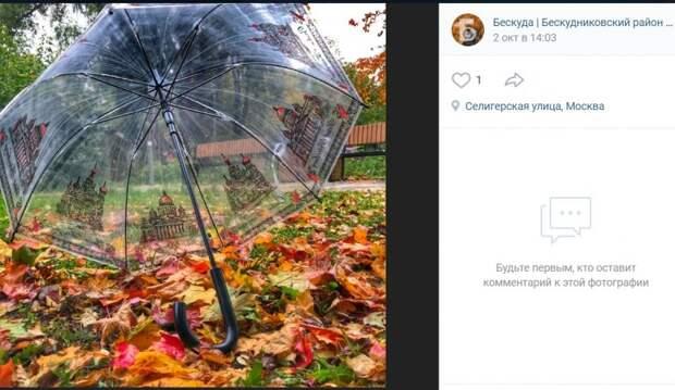 Фото дня: опавшую листву укрыли от осенних дождей