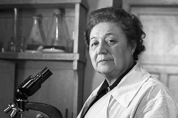 Зинаида Ермольева: почему Сталин называл создательницу антибиотиков «сестренкой»