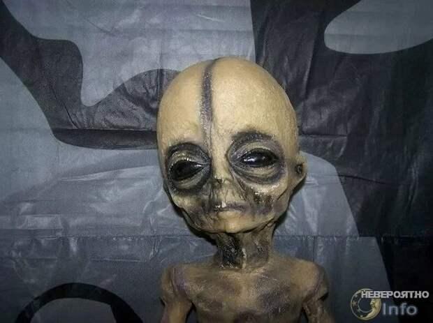 Военный инженер заявил о существовании пришельцев