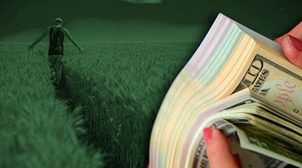 «Аграрный потенциал Украины будет работать на европейских и американских пенсионеров». Соцсети про открытие украинского рынка земли
