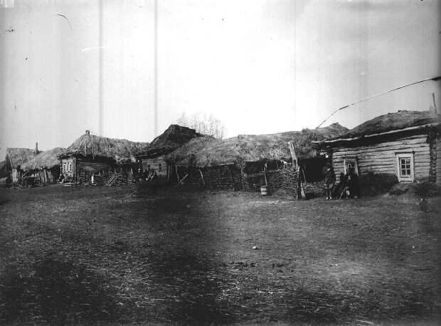 Пустующая деревня Пермяево. Нижегородская губерния, Нижегородская губерния, Лукояновский уезд, 1891-1892 год.