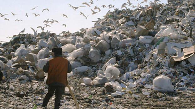 России грозит мусорный коллапс: В Счётной палате раскрыли неутешительные сроки