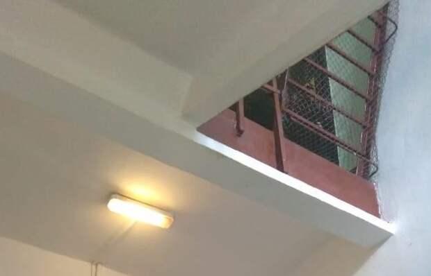 В подъезде дома на Менжинского восстановили освещение – «Жилищник»