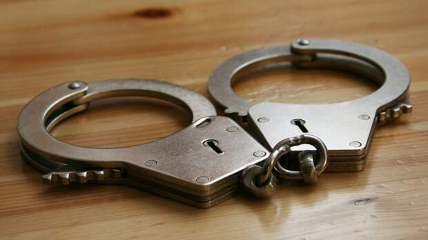 Доцента ВШЭ арестовали по подозрению в педофилии