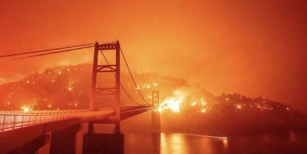 В США лесные пожары уничтожили тысячи домов, не менее 25 погибших - ТЕЛЕГРАФ