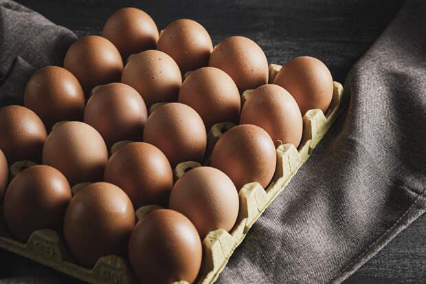На Советской птицефабрике в Кирове автоматизировали сбор куриных яиц
