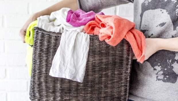 10 мест в вашем доме, где прячется плесень