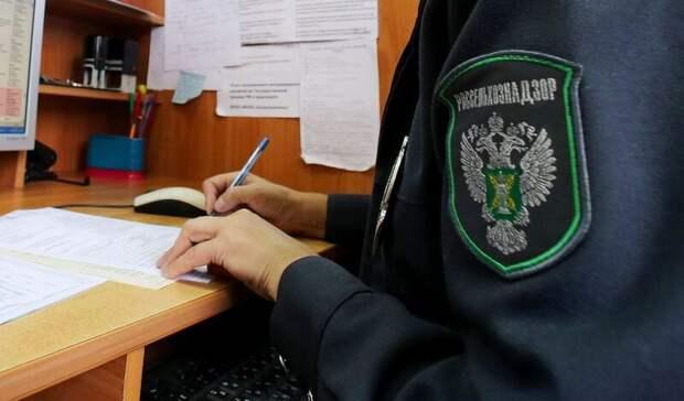 Россельхознадзор пропустил иранские арбузы в Волгоград
