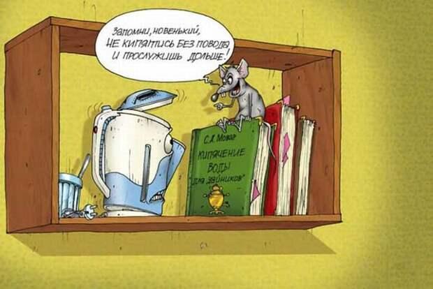 Смешные карикатуры (45 штук)