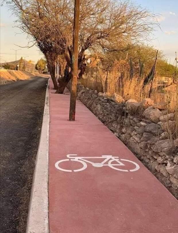 Возможно, это изображение (велосипед, дорога и дерево)