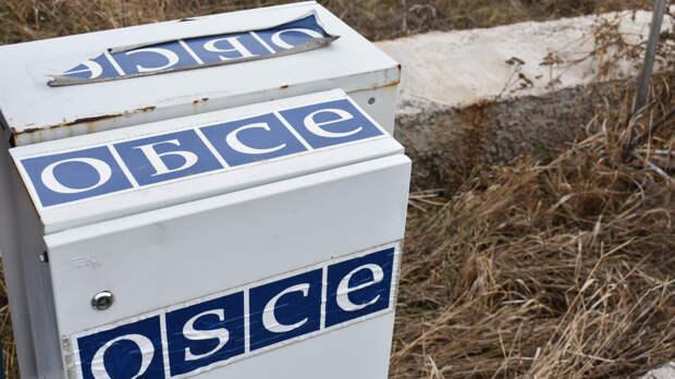 ОБСЕ обвинили в тройных стандартах из-за отказа реагировать на притеснения на Украине
