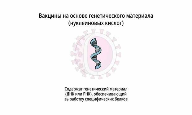 О вакцинах простым языком: 5 технологий производства