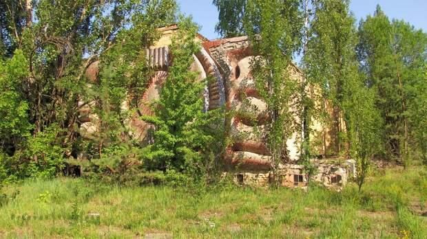 chnpp09 Оживающий Чернобыль