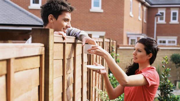 Скандальные дачные соседи: как с ними договориться