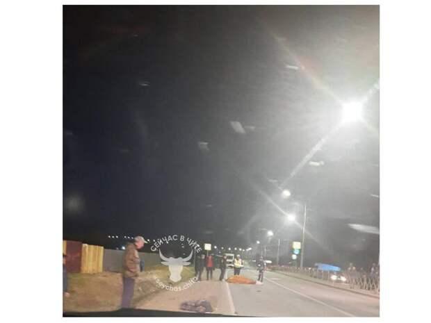 Мужчина и корова погибли в ДТП на трассе в Новокручининске