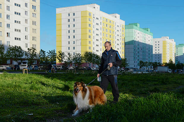 Новосибирские депутаты предложили запретить собакам лаять