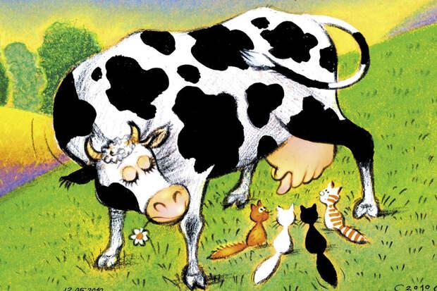 Корова по имени Ахтыбля