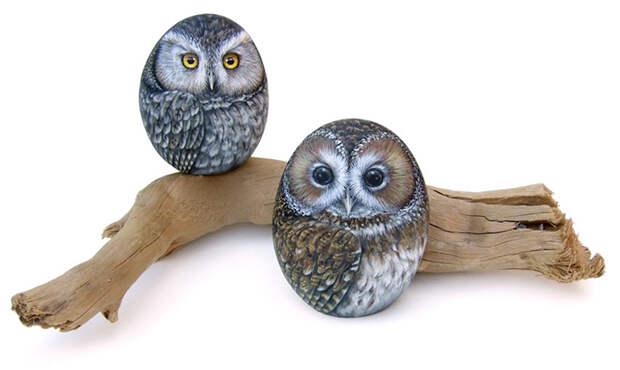 Художник оживляет камни, превращая их в картины с изображением животных